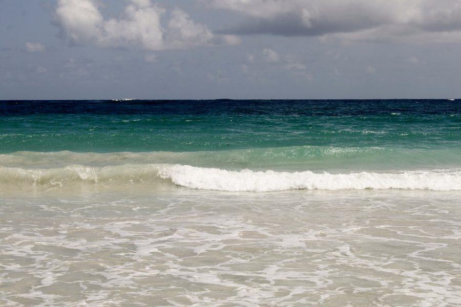 Les activités en Martinique